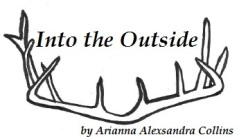 Into the Outside by Arianna