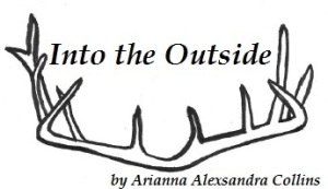 Into the Ouside logo