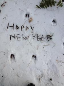 Happy New Year 2016 sticksandsnow by Arianna