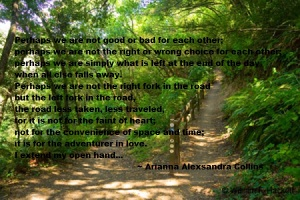 The Left Path a poem by Arianna Alexsandra Collins