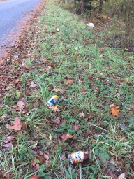 Beer cans along the road