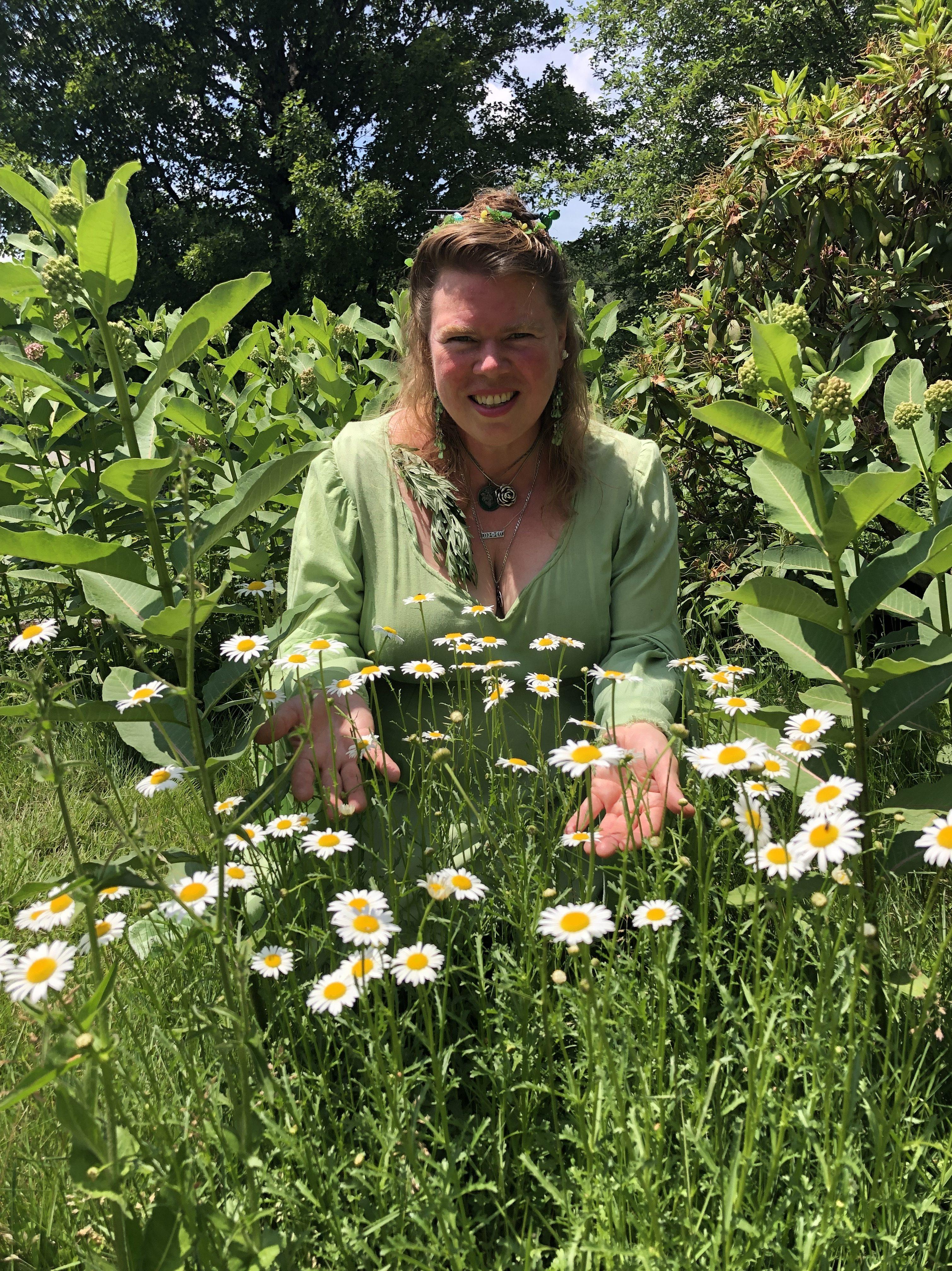 Arianna among the ox-eye daisies and milkweed